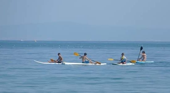 summer camp program with paddling