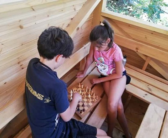 Chess game during children's camp